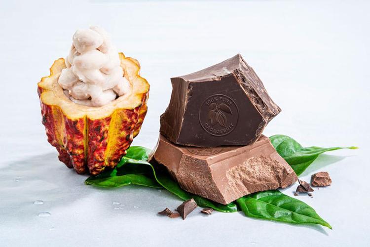 Компания Barry Callebaut расширила линейку инновационных продуктов