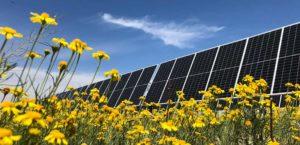 Nestlé sets out plan to half emissions by 2030
