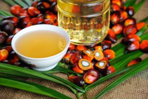 How blockchain can ensure sustainable practices in the palm oil industry