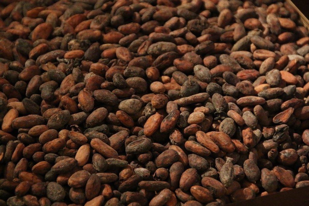 Lindt & Sprüngli achieves 100% traceable cocoa beans