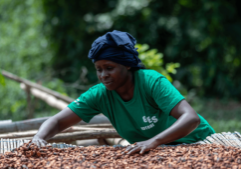 Fairtrade Fortnight aims to shine a light on inequality in the cocoa industry
